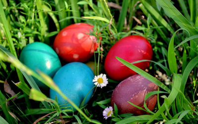 An eco-friendly Easter: recipes, tips, and more