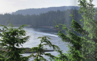 Rainforest Alliance soars in global sustainability