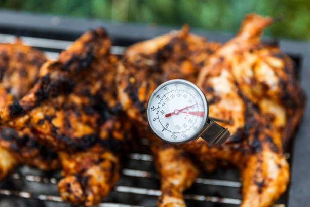 Thermometer spoked into a chicken on a grill to check if it's done