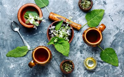 8 Sage Substitutes to Spice Up Your Culinary Experience